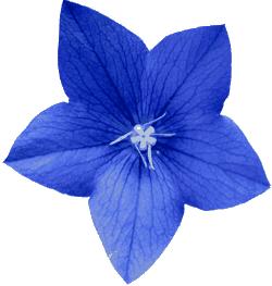Adrian Sampson: Bluelet: Using Native Python Coroutines as