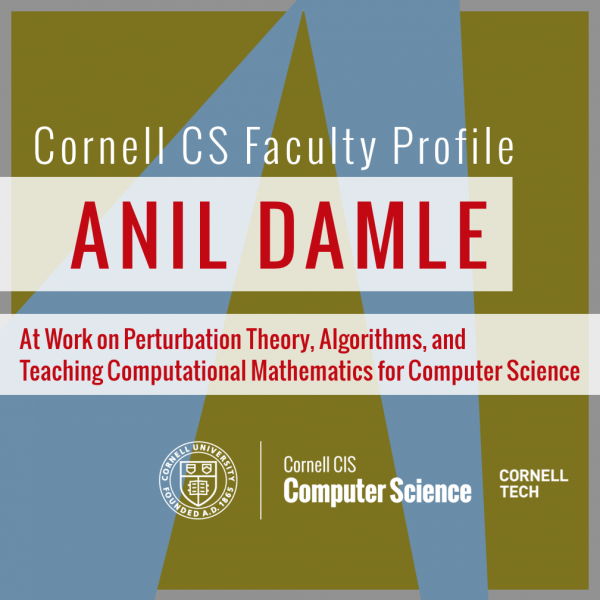 Faculty Profile: Anil Damle